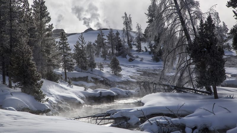 Yellowstone National Park Theme Preview Image