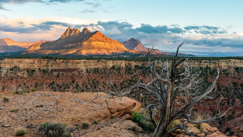 Zion National Park Theme Preview Image